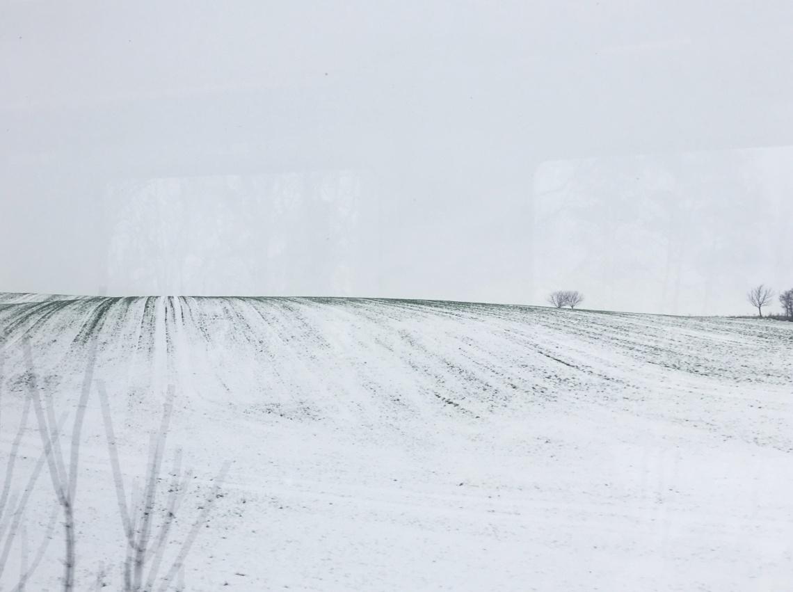 train-view